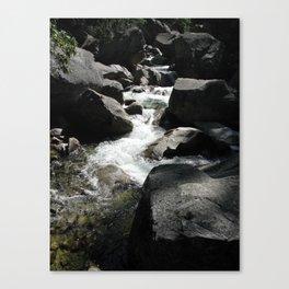 Yosemite Runs Through Canvas Print