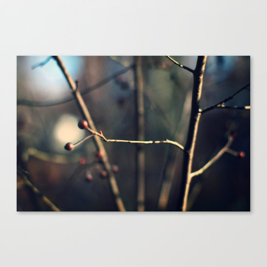 Winter Waits Canvas Print