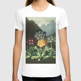 Group of Auriculas :  Temple of Flora T-shirt