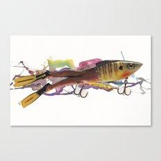 Darwin's Ark I Canvas Print