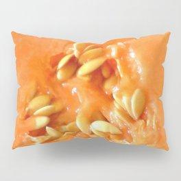 Melon Nature Pillow Sham