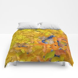Nectar by Tito Comforters
