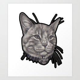 Frankie (street cats) Art Print