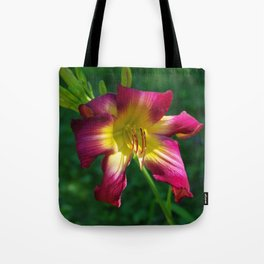 Raspberry and gold daylily flower - Hemerocallis 'Liberty Banner' Tote Bag