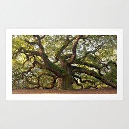 Old Oak Tree Ultra HD Art Print