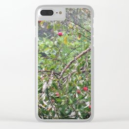Apple Tree In The Forest Clear iPhone Case