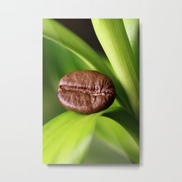 Coffee beans on bamboo Metal Print