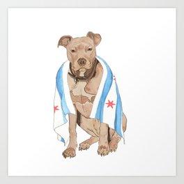 Chicago Dog Artwork & Home Decor Art Print