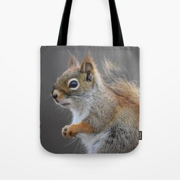 Beautiful Red Squirrel Tote Bag