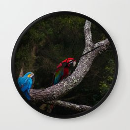 Colourful Macaw Birds Wall Clock