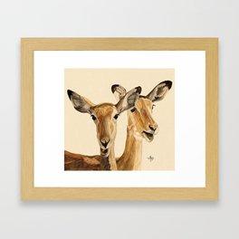 Impalas Watercolor Framed Art Print