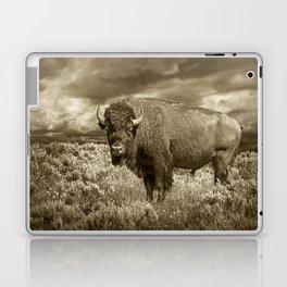 American Buffalo in Sepia Tone Laptop & iPad Skin