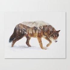 Arctic Wolf Canvas Print