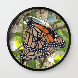 Monarch Mating Wall Clock