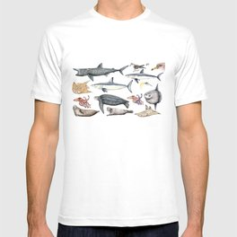 Marine wildlife T-shirt