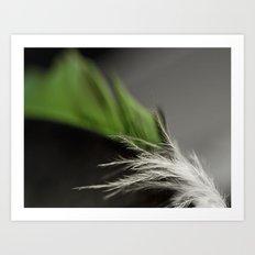 Green Feather Art Print