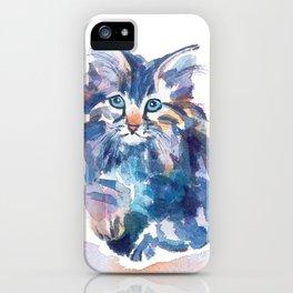 Crazy Quilt Kittens iPhone Case