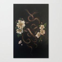 Two Snakes Canvas Print