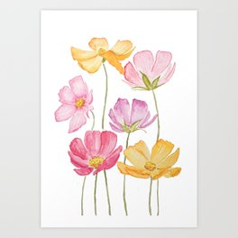 colorful cosmos flower Art Print