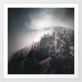 Enchanting forest 4 Art Print