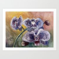 Orchid Morning Art Print