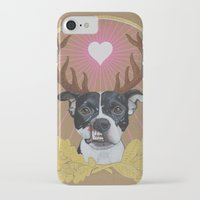 pitbull iPhone & iPod Cases featuring Jaggermeister - pitbull by PaperTigress