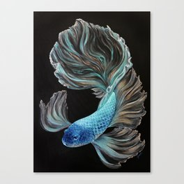 Little BetaBlue Canvas Print
