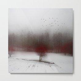 Heart of Winter I Metal Print