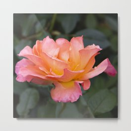 Jump for Joy Rose Metal Print