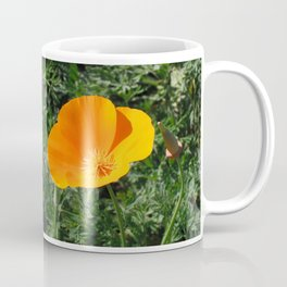 Golden Beauty. California Poppy. © J. Montague. Coffee Mug