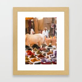 Spices of India Framed Art Print