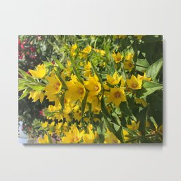 Happy Yellow Flowers Metal Print