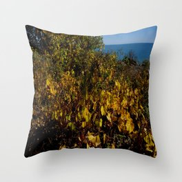 Fall Gold on the Lake Shore (Chicago Northerly Island Collection) Throw Pillow