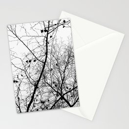 Nature in black and white Stationery Cards