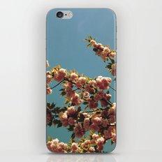 May iPhone & iPod Skin