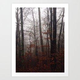 Great Smokey Mountains 1 Art Print