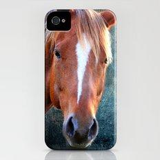 horse iPhone (4, 4s) Slim Case