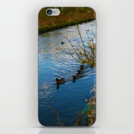 Duck family day out in The Cotswold's iPhone Skin