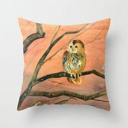 Colorful Owl Art Throw Pillow
