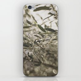Olive Tree Leaves in the Mist iPhone Skin