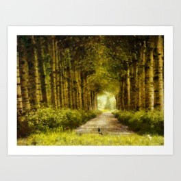 Country Side Road Art Print