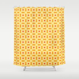 Theoretical foundations Shower Curtain