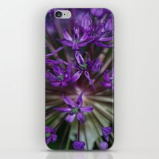 Purple Burst iPhone & iPod Skin