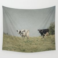 cows Wall Tapestries featuring Moo Cows by Pure Nature Photos