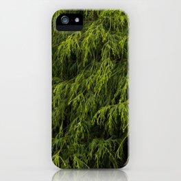 Evergreen Shrub iPhone Case