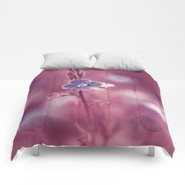 Forget-me-not Violet toned Flower Comforters