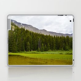 Views along the Wilcox Pass Hike in Jasper National Park, Canada Laptop & iPad Skin