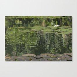 Single flower garden Canvas Print