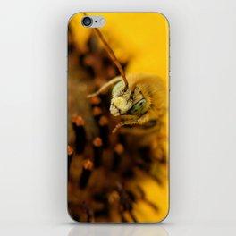 Honeybee on Wild Sunflower iPhone Skin