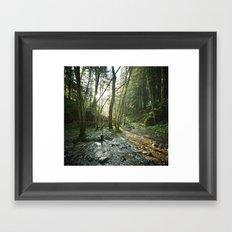 Dans les bois. Framed Art Print